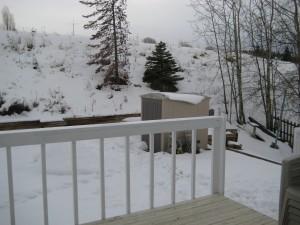 Logan Lake Home: Back Yard